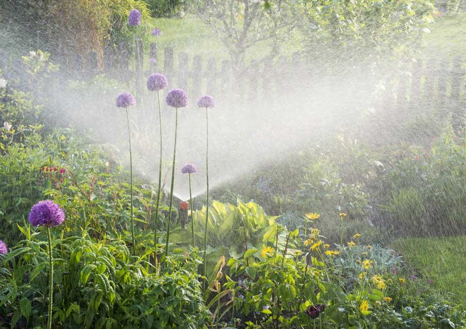 Irrigazione automatica: <br>il futuro è smart