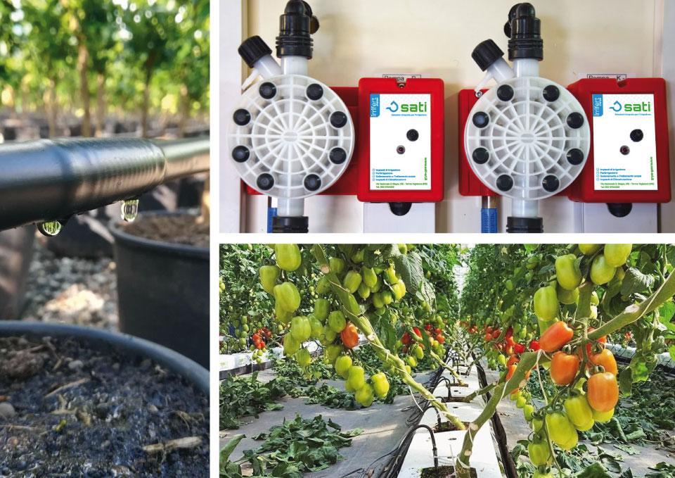 Irrigazione: i consigli dell'agronomo per i mesi più caldi